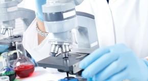Akredytowane czy z zezwoleniem PWIS – jakość usług pomiarowych dla radiologicznych systemów obrazowania